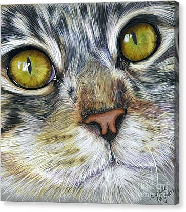Stunning Cat Painting Canvas Print by Michelle Wrighton