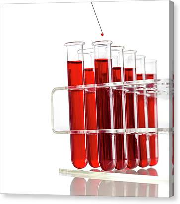 Blood Sample And Test Tubes Canvas Print by Science Photo Library