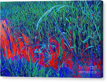 Bloody Battle Of New Orleans 1 Canvas Print by Alys Caviness-Gober