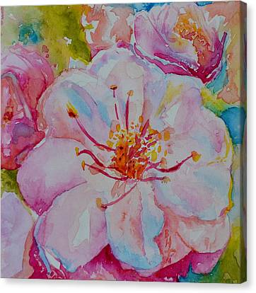 Blossom Canvas Print by Beverley Harper Tinsley