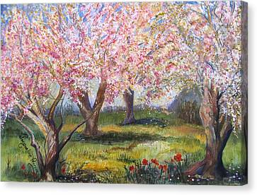 Blossomtime Canvas Print by Jacqueline Pearson