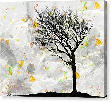 Blowing It The Wind Canvas Print by Edmund Nagele
