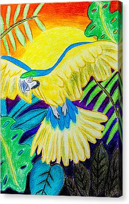 Blue And Gold Macaw Canvas Print by Pati Photography