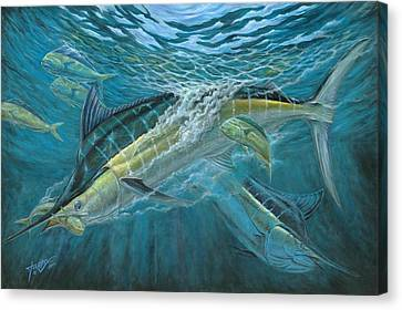 Blue And Mahi Mahi Underwater Canvas Print by Terry Fox