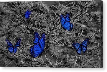 Blue Butterflies 2 Canvas Print by Barbara St Jean
