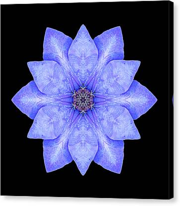 Blue Clematis Flower Mandala Canvas Print by David J Bookbinder