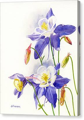 Blue Columbine Blossoms Canvas Print by Sharon Freeman