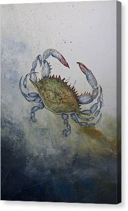 Blue Crab Print Canvas Print by Nancy Gorr