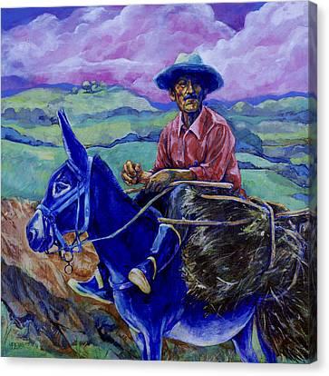 Blue Donkey Canvas Print by Derrick Higgins