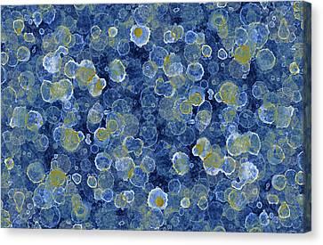 Blue Drip Canvas Print by Frank Tschakert