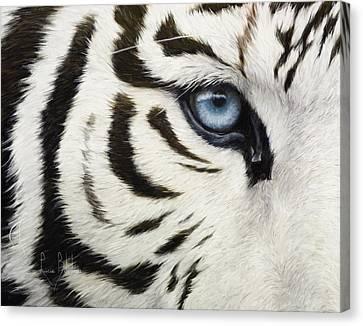 Blue Eye Canvas Print by Lucie Bilodeau