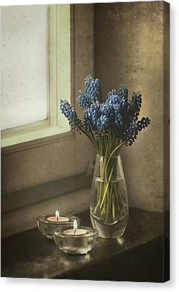 Blue Grape Hyacinth Flowers And Lit Candles At The Window Canvas Print by Jaroslaw Blaminsky