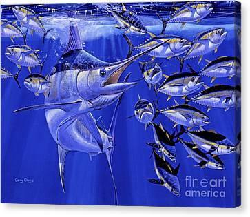 Blue Marlin Round Up Off0031 Canvas Print by Carey Chen