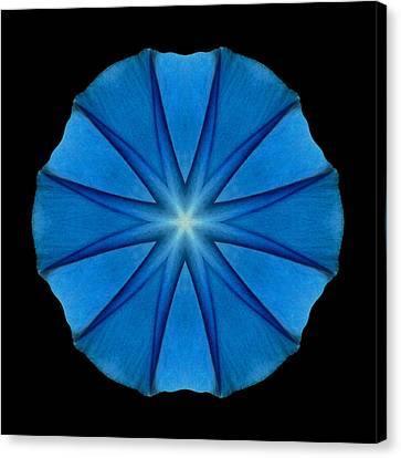 Blue Morning Glory Flower Mandala Canvas Print by David J Bookbinder