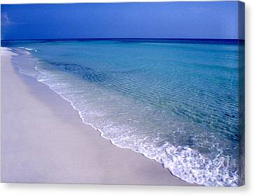 Blue Mountain Beach Canvas Print by Thomas R Fletcher