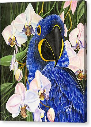 Blue Parrot  Canvas Print by Michelle Kelly