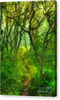 Blue Ridge - Hiking Trail Through Trees In Fog II Canvas Print by Dan Carmichael