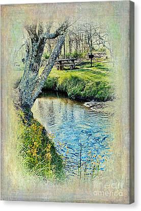 Blue Ridge Picnic Canvas Print by Dan Carmichael