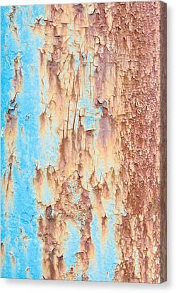 Blue Rusty Metal Canvas Print by Tom Gowanlock