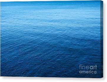 Blue Sea Canvas Print by Carlos Caetano