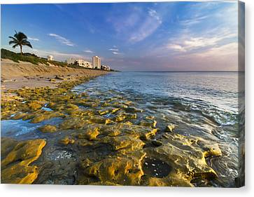 Blue Sky Over Coral Cove Canvas Print by Debra and Dave Vanderlaan