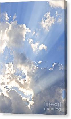 Blue Sky With Sun Rays Canvas Print by Elena Elisseeva