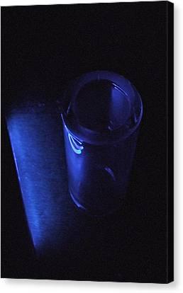 Blue Slide Blues Canvas Print by Everett Bowers
