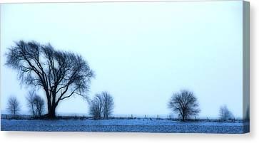 Blue Treeline Canvas Print by Kimberleigh Ladd