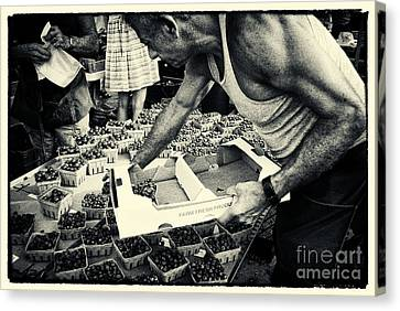 Blueberries At The Market New York City Canvas Print by Sabine Jacobs
