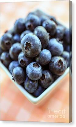 Blueberries Closeup Canvas Print by Edward Fielding