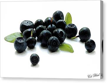 Blueberries Canvas Print by Cole Black