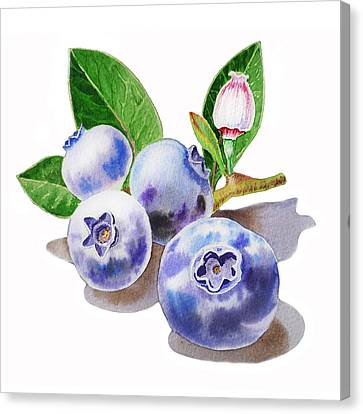 Artz Vitamins The Blueberries Canvas Print by Irina Sztukowski