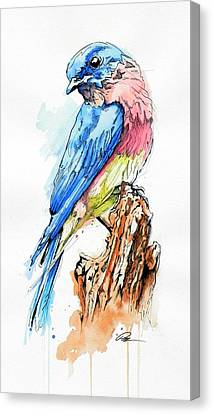 Bluebird Canvas Print by Paul Miners