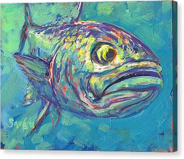 Bluefish Study Canvas Print by Savlen Art