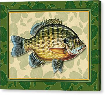 Blugill And Pads Canvas Print by JQ Licensing