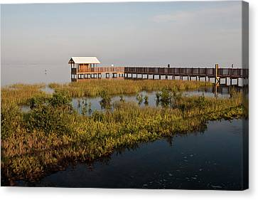 Boardwalk At South Padre Island Birding Canvas Print by Larry Ditto