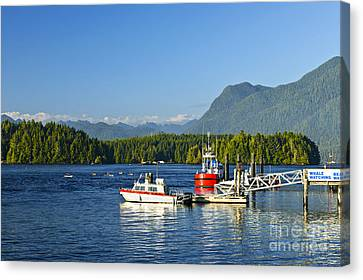 Boats At Dock In Tofino Canvas Print by Elena Elisseeva