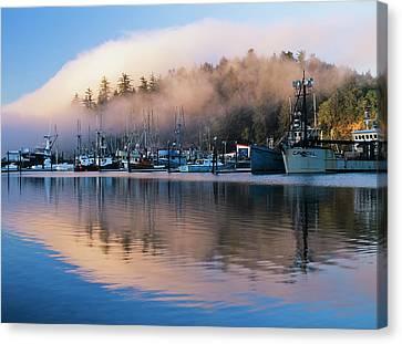 Boats Dock At Winchester Bay  Oregon Canvas Print by Robert L. Potts