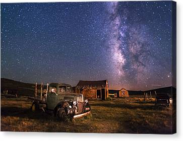 Bodie Nights Canvas Print by Cat Connor