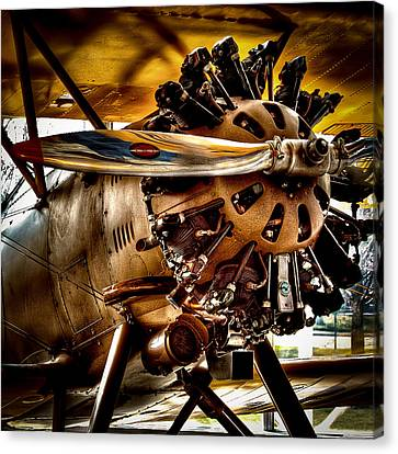 Boeing Model 100 Canvas Print by David Patterson