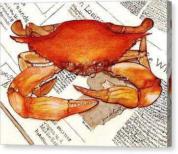 Boiled Crab Canvas Print by June Holwell