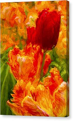 Bold Tulips Canvas Print by Paul W Faust -  Impressions of Light