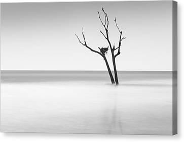 Boneyard Beach - II Canvas Print by Ivo Kerssemakers