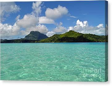 Bora Bora Green Water Canvas Print by Eva Kaufman