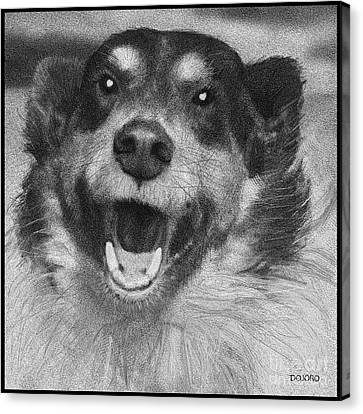 Border Collies Rule Canvas Print by Doris Rowe