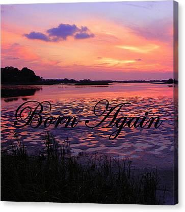 Born Again  Canvas Print by Sheri McLeroy
