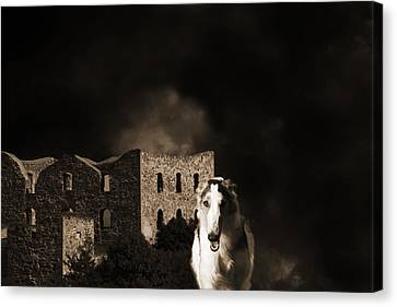 Borzoi Wolf Hound Hunting At Night Canvas Print by Christian Lagereek