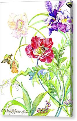 Botanical Print Canvas Print by Kimberly McSparran