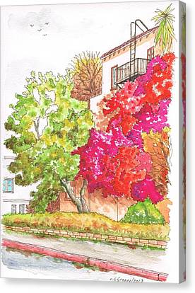 Bougainvilleas And A Green Tree In Hollywood - California Canvas Print by Carlos G Groppa