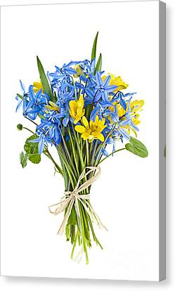 Bouquet Of Fresh Spring Flowers Canvas Print by Elena Elisseeva
